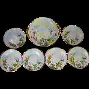Thomas Bavaria H.P. 7-Piece Cake Plate Set w/ Wild Roses & Pastel Decor- artist ...