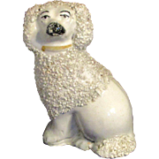 "3.5"" Staffordshire White Grainy Poodle Dog Figurine"