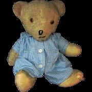 "REDUCED 14"" Antique Articulated Mohair Glass Eye Light Brown Teddy Bear"