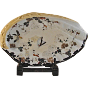 Japanese Antique pre-Noritake Chocolate Ikezono Porcelain of an Abalone Shell Plate by Shunko