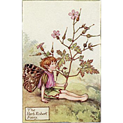 Flower Fairy Print - Herb Robert, 1930s