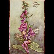 Flower Fairy Print - Foxglove, 1930s