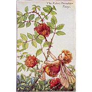 Flower Fairy Print - Robin's Pincushion, 1930s