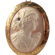 REDUCED Antique  Carved Conch Shell Cameo  Pendant/Brooch Edwardian 1900/10s