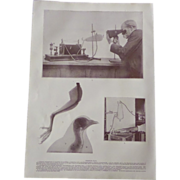 Early Skiagraph Photographic Half tone Print X Rays Roentgen Ray Images Equipment 1900. No.1