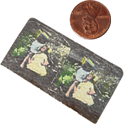 One Miniature Stereo Card in Color for Dolls