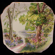REDUCED Shelley Woodland Small Square Plate