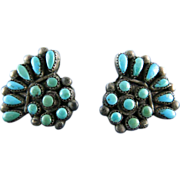 Vintage Native American Sterling Silver Turquoise Screw Back Earrings