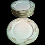 SALE 8 Dinner Plates PT Bavaria Tirschenreuth - the Montrose #4485-