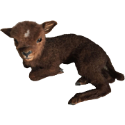 SOLD 1930 Very Rare French Taxidermy Miniature Vintage Baby Lying Lamb