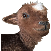 SOLD 1930 Very Rare French Taxidermy Miniature Vintage Baby Standing Lamb