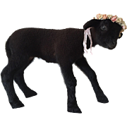SOLD Beautiful French Vintage Taxidermy Black Baby Lamb