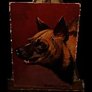 SOLD Donadini Dresden Artist Signed Striped Hyena Postcard~Showing Teeth