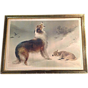 "SOLD Collie Rescuing Lamb Print titled  ""Found"""