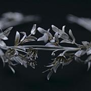SOLD 19th Century Real Silver Bridal Tiara / Victorian German European / Free Shipping Worldwi