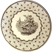 Historical Staffordshire Columbian Star Brown Transfer Plate Harrison Campaign Ca 1840