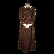 Antique Dress, Antique Gown, Afternoon Dress, Victorian Dress, ca. 1897