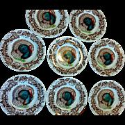 SALE Clarice Cliff Turkey Royal Staffordshire Set  12 Plates Transferware