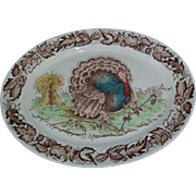 SALE Clarice Cliff Royal Staffordshire Rare Pattern Turkey Platter