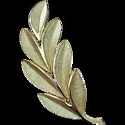 TRIFARI Gold Tone Leaf Brooch Pin