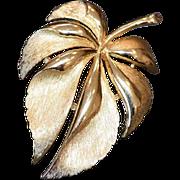 TRIFARI Leaf Brooch Pin