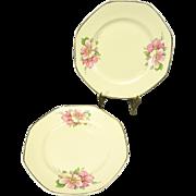 Homer Laughlin Vintage Octagonal Dessert/Pie Plate Wild Rose Yellowstone