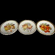 "Set of 3 Vintage Mitterteich  Bavaria Germany 7.5"" Dessert Plates-Fruit Design"