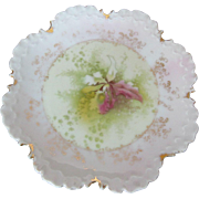 Antique Bavarian Rosenthal Monbijou Orchid Plate Signed Thuring, 6""