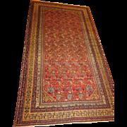 Antique Malayer-Hamadan Kurdish Oriental Rug ,  Corridor Carpet,Western Persia , 12.8 x 6.8 ..