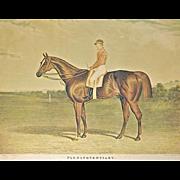 SALE Antique Derby Winner Horse Engraving