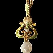 Fine Antique Art Nouveau 18 carat gold, enamel and baroque pearl Iris flower pendant and ...