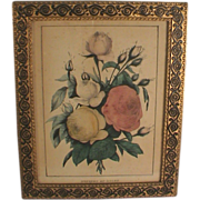 Roses Lithograph Print Horace Thayer Pub. Hand Colored C.1860 Antique