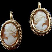 REDUCED 14 Karat Shell Cameo Earrings