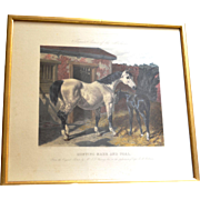 """SALE Engraving, London,  1856, """" Hunting Mare and Foal."""""""