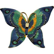 Yellow Gold Plated/ Painted Enamel Butterfly Pin