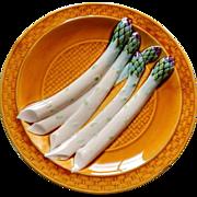 French Sarreguemines Majolica  Asparagus Plate