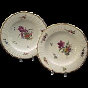 Antique Pair Royal Copenhagen Porcelain Plates With Hand Painted Floral Decoration And Gilt ..