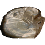 SOLD Natural Large Mother of Pearl Oyster Shell