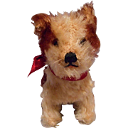 Steiff Mohair Molly Dog 14 Cm