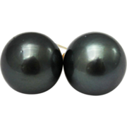 SALE 11.5mm Cultured Tahitian Pearl Earrings 14KT Yellow Gold