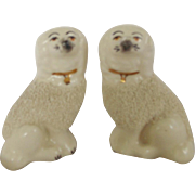 SALE Pair of Diminutive English Staffordshire Poodle Dogs