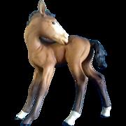Retired Kaiser Brown Porcelain Foal Horse Colt Germany Figurine