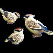 Retired DeRosa Rinconada Silver Anniversary 2004 Club 'Waxwing Bird' Figurines #795, #1739 A &