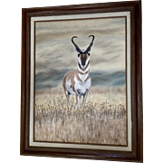 Lawton, Pronghorn Antelope Buck Realism Oil Painting Signed by Artist
