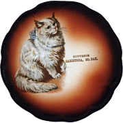 Antique Taylor Smith Taylor Mark 1908-1915 Cat China Collectible Souvenir Plate Canistota, ...