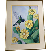 E. S. Jenkins, Hummingbird Drinking From A yellow Cactus Flower LARGE Watercolor Painting Work