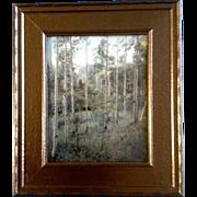 "Harry Landis Standley (1881-1951), Photograph, Colorado ""THE ASPENS"" 1930,  Colorado Ar"