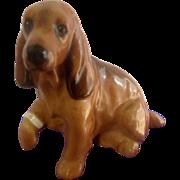 Royal Doulton Cocker Spaniel Dog K9 With Bandage Hurt Foot Figurine Vintage Old Stamp K9 -7
