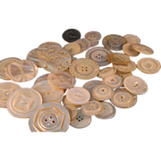 "42 Late 1800's Mother of Pearl Carved Sew through Button Lot 1""-1 1/2"""