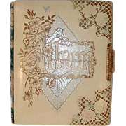 1892 Victorian Photo Album Decorated Celluloid Cover & Brass Latch 2 Size Photos